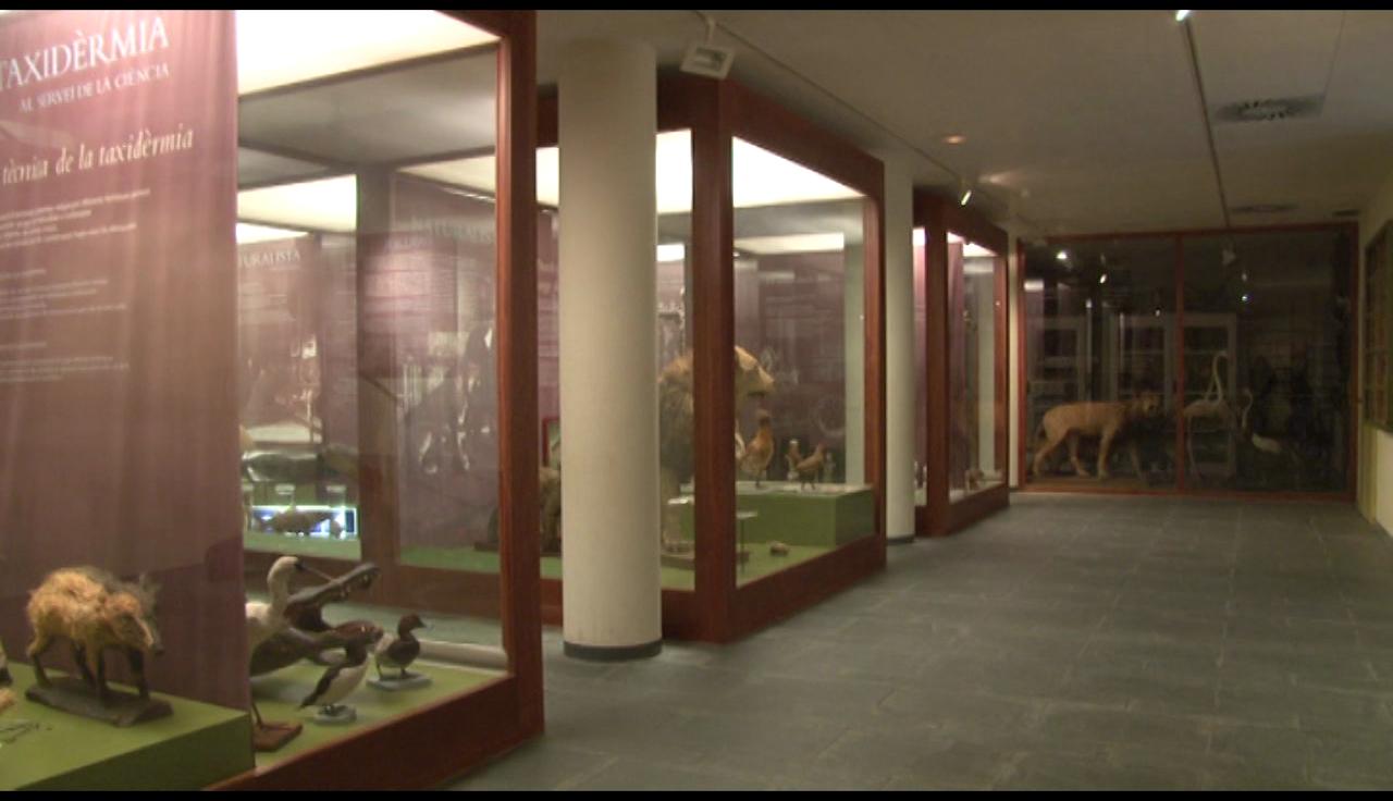 Banyoles invertirà en diverses millores als espais museístics de la ciutat, en els propers dos anys