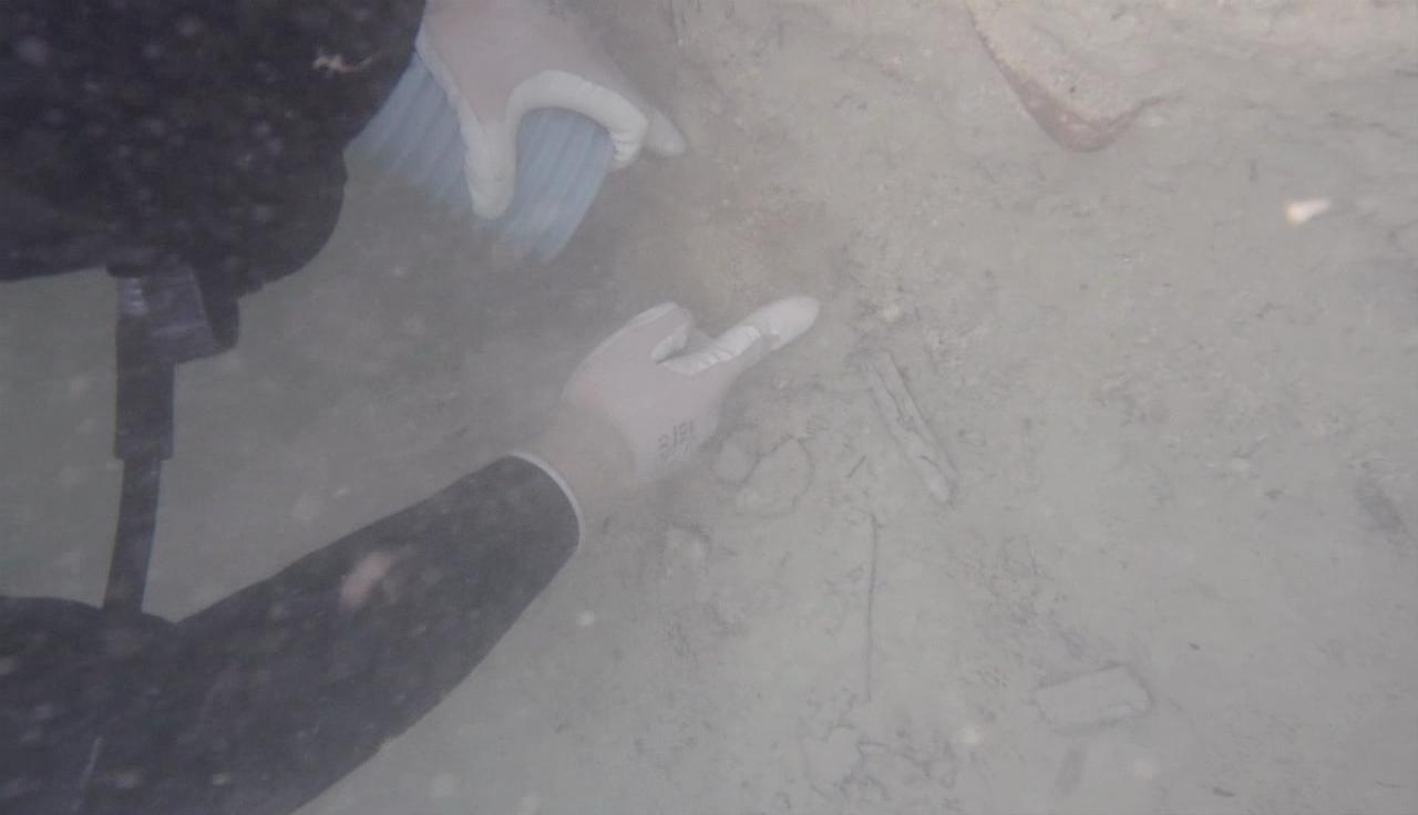 Acaba la campanya d'excavacions al jaciment neolític de la Draga